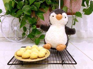 黄金椰丝球,感谢我女儿的新朋友企鹅小姐友情出镜!