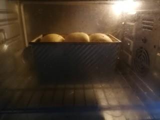 最爱面包+南瓜吐司,二发完成后,烤箱180度预热5分钟,然后送入烤箱烘烤,180度上下火下层烘烤35分钟,中途看顶部上色情况加盖锡纸,以防上色过度