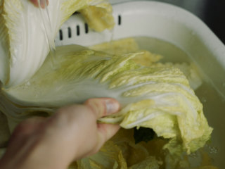 制作自家口味的韩式泡菜,大约2-3小时后,白菜帮子都完全蔫了,就可以开始制作腌泡菜。