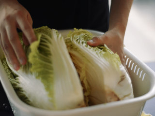制作自家口味的韩式泡菜,每30分钟将白菜翻转180度,让盐分充分接触。