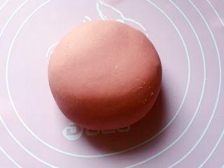 最爱包子+彩球包子,和红色面团:将100克面粉和2克红曲米粉拌匀,缓缓加入酵母水(酵母粉加入温水搅匀融化),边加边用筷子搅拌成絮状。再用手和成软硬适中的面团,盖上保鲜膜放温暖处发酵至2倍大。