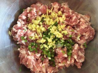 荠菜大馄饨,将五花肉剁碎,加入生姜碎、葱,少许盐、料酒、生抽、鸡精。