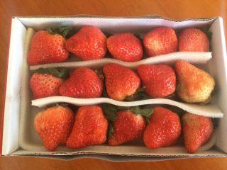 草莓大福,这是冬季的第一批草莓