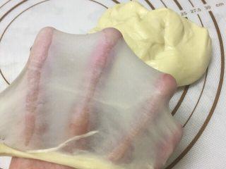 小屁屁面包,揉出手套膜