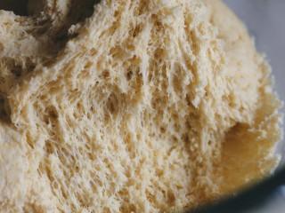 梨子造型粗粮馒头,发酵好的面团,内部应该是这样细密的蜂窝状。
