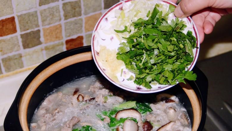 小白菜羊肉粉丝汤,关火,砂锅有余热,加入葱姜末和香菜末。