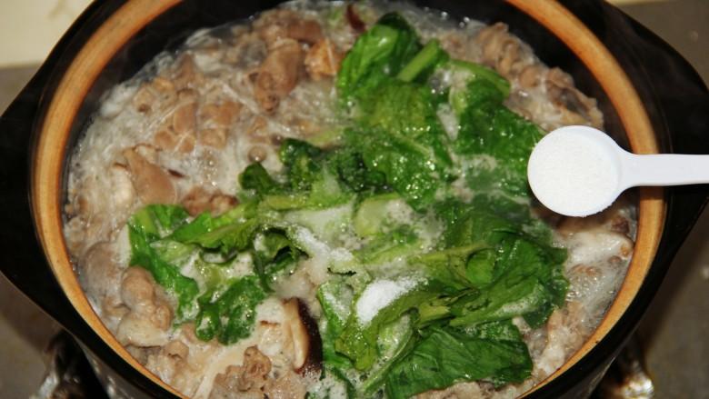 小白菜羊肉粉丝汤,适量盐。