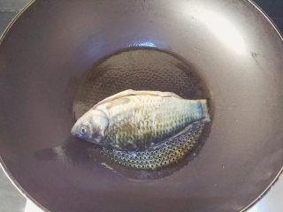 麻油鲫鱼浓汤,热锅后倒入麻油,烧热后下鲫鱼
