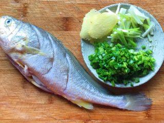 幸福的味道-红烧黄鱼,准备好姜葱