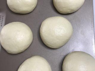 中种奶油奶酪吐司,松弛完毕,将面团均分6份,继续滚圆松弛15分钟。