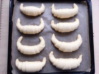 牛角包,进行第二次发酵。38度,40分钟。