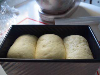 奶香土司,如图已发至8.9分满,烤箱提前预热10分钟