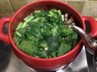 坤博砂锅芥菜煲, 炒软的菜加入开水