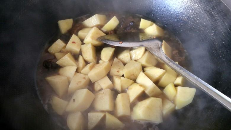 土豆炖牛肉,牛肉烧好了,连同汤汁一起倒入锅中,放土豆一起炖。