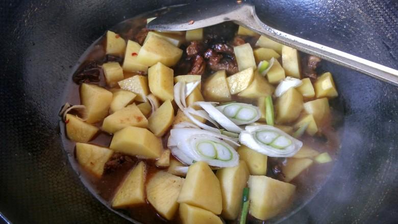 土豆炖牛肉,放切好的大葱,放适量的盐。