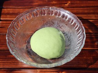 乌龟馒头,中筋面团加菠菜汁、酵母揉成软硬适中的绿色面团盖上保鲜膜进行第一次发酵
