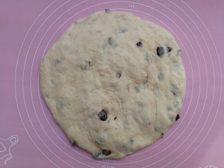 蔓越莓酸奶软欧,一发后的面团移至揉面垫上,按扁排气