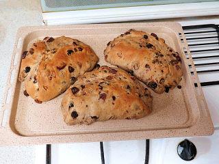 著名的德国传统圣诞面包【史多伦】,出炉