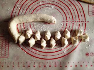 水饺,把面揉匀后,搓成长条,再用刮刀切成大小适中的面剂子,
