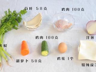 馄钝皮鸡肉蔬菜盒子,食材:馄饨皮30张  芹菜 4根,鸡胸肉 100克,百叶 58克,黄瓜 45克,胡萝卜 50克,洋葱 1/4个,鸡蛋1个