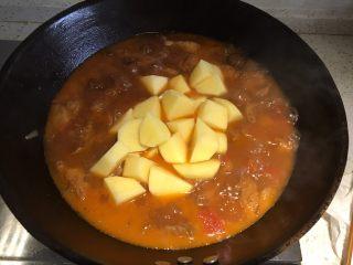 家常必备|土豆炖牛肉,倒入去皮切块的土豆
