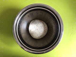 奇亚籽无糖小面包,把面团揉圆,放入容器内