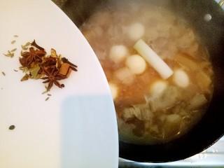 小胖私房红烧肉,加开水没过鸡蛋五花肉,放入大葱段,五香料。