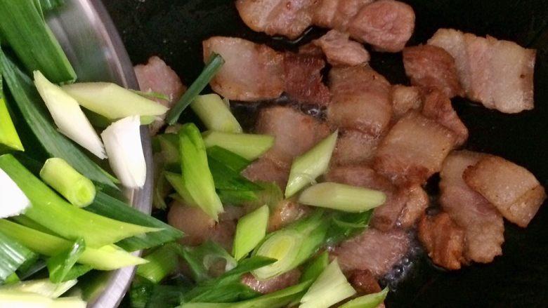 蒜苗炒五花肉,煸好肉就可以加入蒜苗