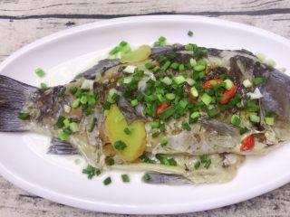 鲫鱼汤菠菜面,盐入味,把鱼捞出来撒上葱花