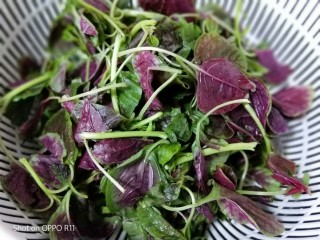 苋菜豆腐咸粥,煮粥的时间,红苋菜摘取叶子部分清洗干净