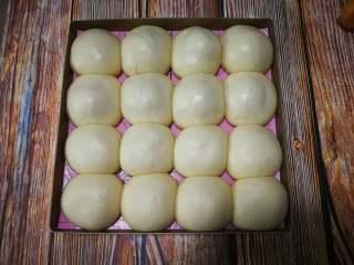 酸奶小餐包(一次发酵),发酵至1.5倍大