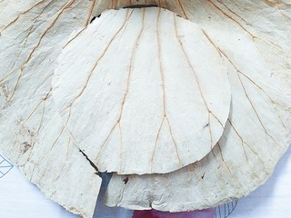 香芋蒸排骨,把荷叶盖在竹蒸笼上,用剪刀照着蒸笼的大小,把荷叶剪成圆形!