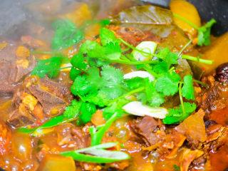 风干羊肉火锅,萝卜熟后,放盐调味,放香菜,葱段。完成。