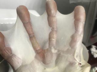 肉松面包卷,6二档把黄油揉进面团后转五档揉至完全扩展阶段,能够拉出比较结实的手套膜。