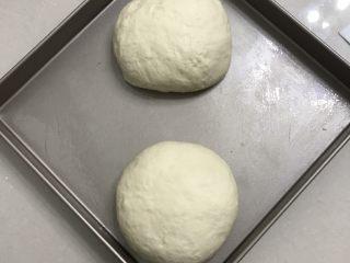 肉松面包卷,9 倒出来拍打面团排气,分成二份滚圆,放入金盘中,盖上保鲜膜放进发酵箱,温度还是27度,松弛20分钟。
