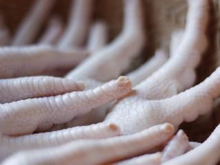 行走的胶原蛋白,家常烧鸡爪,鸡爪清洗干净,然后呢把它尖尖的指甲都剪掉,这样食用起来就不用担心被扎到了