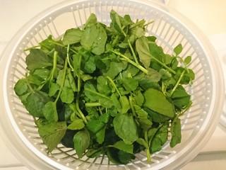 西洋菜柚子沙拉,折好嫩葉嫩莖,洗淨瀝乾水,備用。