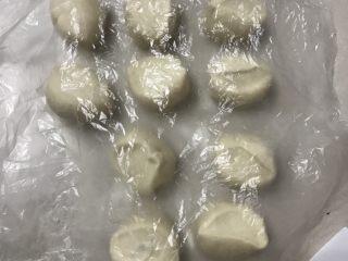 鲜肉包子,用塑料括板切成大约45克左右一个面团,也可以用称称一下。