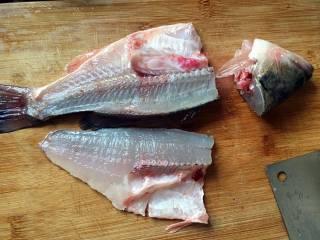 蒜苗萝卜鲈鱼汤,从鱼尾下刀,顺着鱼骨,切到鱼头;