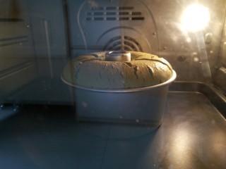 (后蛋法)抹茶戚风蛋糕,如何判断蛋糕熟了  当蛋糕涨到最高点会有慢慢回落的状态  有手轻轻拍扎实没有流动感