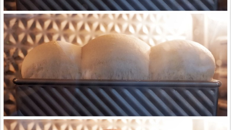波兰种—北海道吐司,烤箱预热,上火180℃,下火190℃,最底层,实际温度180℃,45分钟。