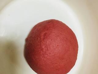 草莓大理石吐司,主面团和加入色粉的面团,覆盖保鲜膜,进行基础发酵,发酵至两倍大。