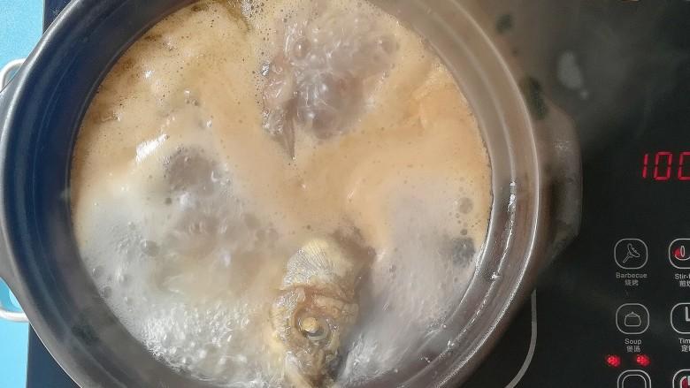 胡萝卜山药鲫鱼汤,煮开后将所有食材转入砂锅,中小火慢慢炖煮30分钟即可出锅