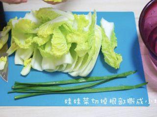 快手版泡菜,娃娃菜洗净切点根部撕成小块