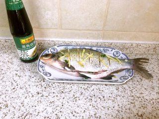清蒸鳊鱼,鱼表面刀口处填上姜丝,再撒上一些