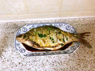 清蒸鳊鱼,放好料的鳊鱼入味十分钟,不宜太久,以防肉质变硬