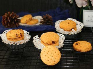 健康小麦胚芽燕麦葡萄饼干