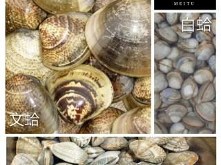 酒蒸蛤蜊――快手复刻美味,跟大家分享一下文蛤,白蛤和花蛤的照片,在做不同美食时对食材的选择也是不同的(详见贴士)。