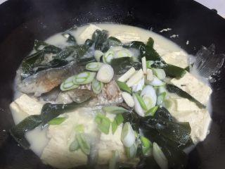 鲫鱼炖豆腐,加入适量盐,鸡精,蒜,葱