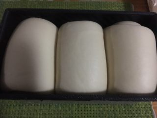 奶酪系列之:奶酪酸奶吐司,发至模具的8、9分满